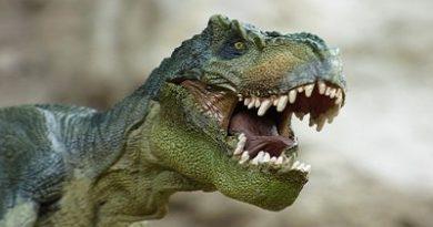 dinozorların özellikleri