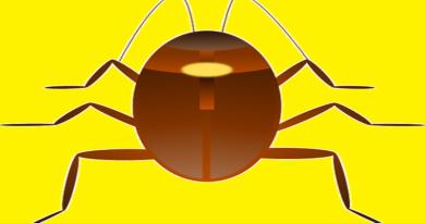 hamam böceğinden nasıl kurtuluruz