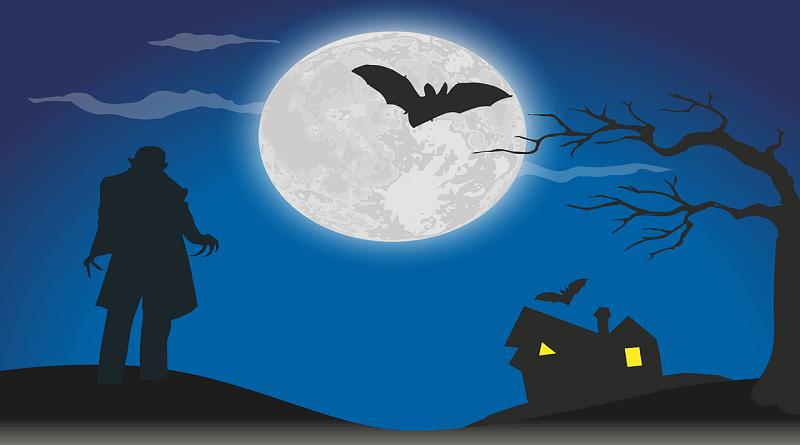 Yarasa Neden Geceleri Uçar