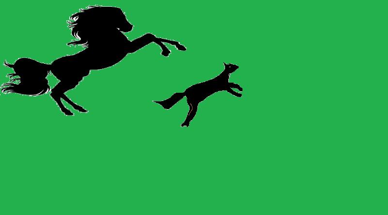 kurt ile at