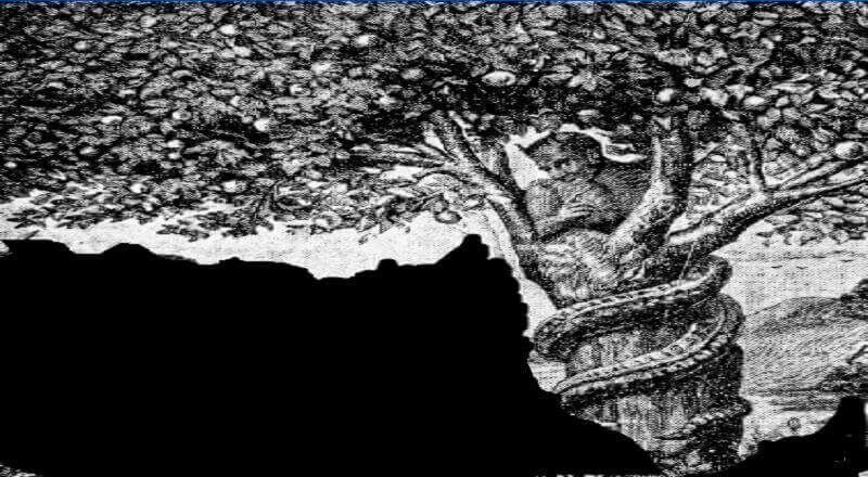 Hz Adem ile Hz Havva Kıssası