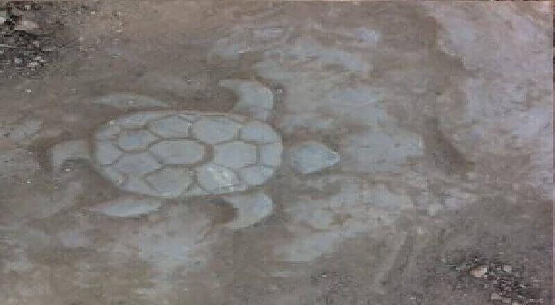Define Kaplumbağa İşareti Anlamı ve Çözümü