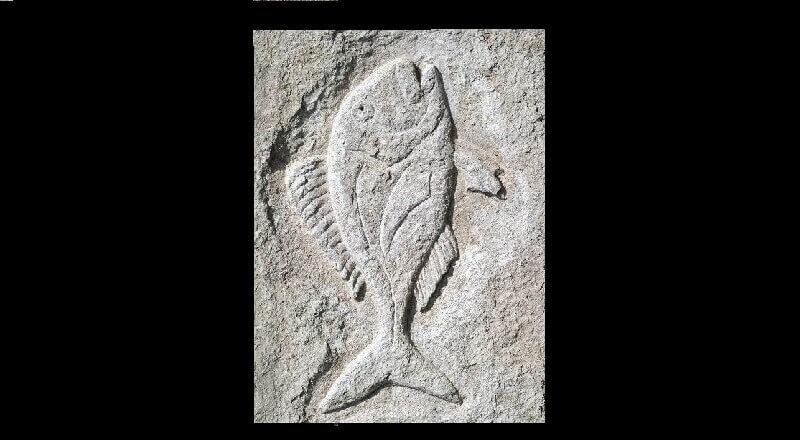 Define Balık işareti