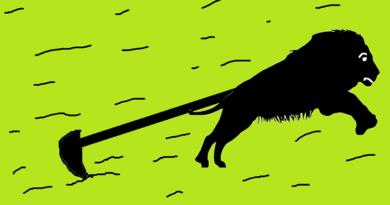 aslan ile çiftçi masalı