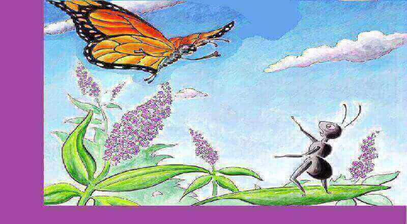 Kelebek ile Karınca Hikayesi