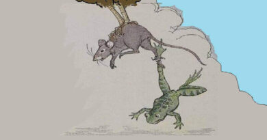 Fare ile Kötü Kalpli Kurbağa Masalı
