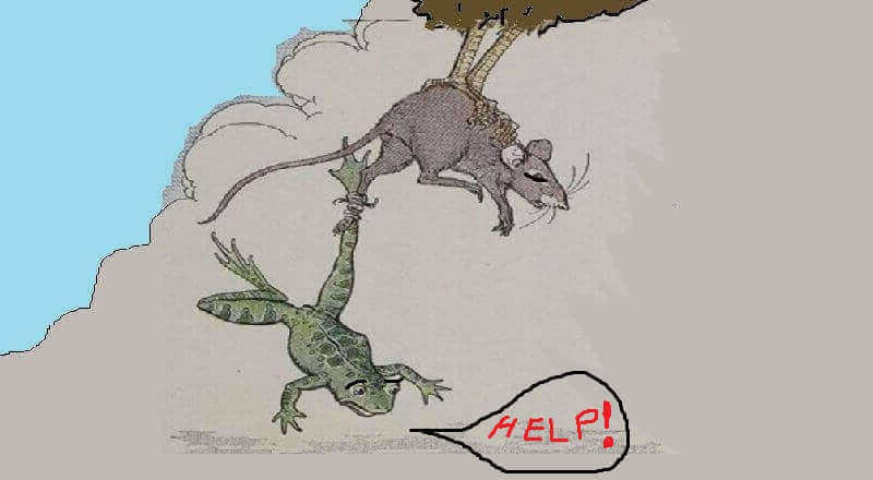 Wicked Frog and Poor Mouse